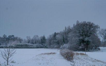Paysage_hivernal