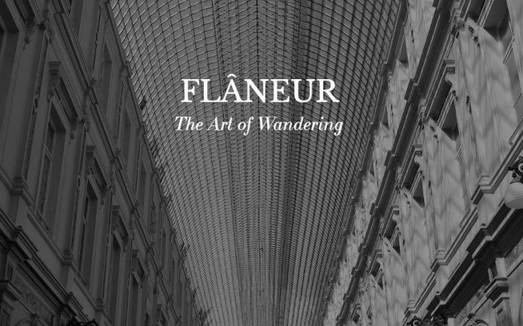 Flâneur : L'art de vagabonder dans Paris